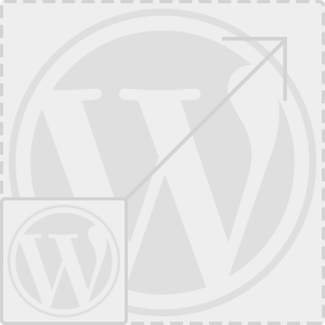 Webseite Wordpress